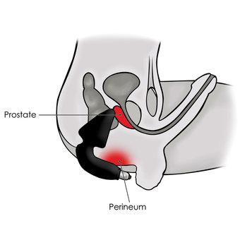 Boy Finger Hole Toys Prostate Vibrator